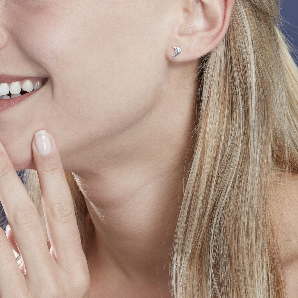 Boucles D'oreilles Puces Fulvie Dauphin Or Blanc - Clous d'oreilles Femme | Histoire d'Or