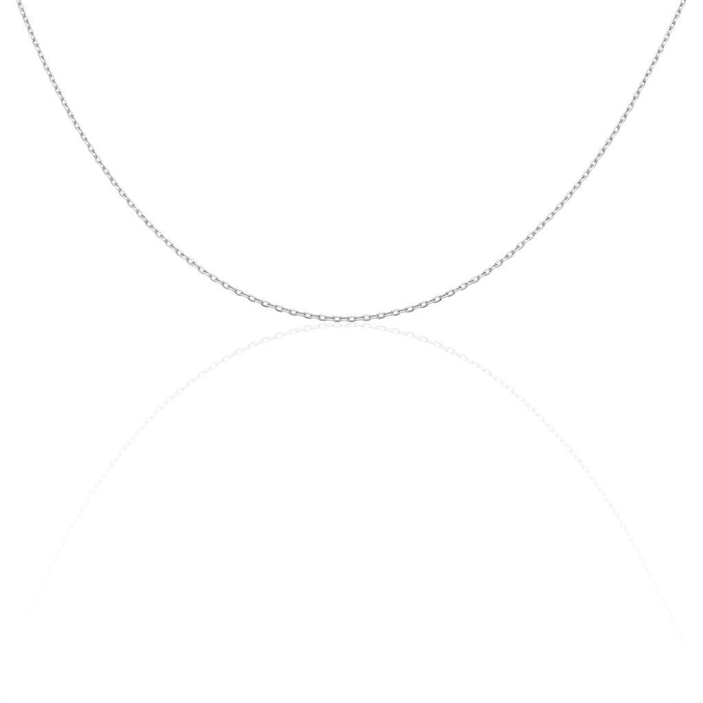 Chaîne Igoa Maille Forçat Diamantee Or Blanc - Chaines Unisexe | Histoire d'Or