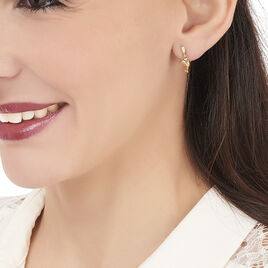 Boucles D'oreilles Pendantes Fulvie Dauphin Or Jaune - Boucles d'oreilles pendantes Femme | Histoire d'Or