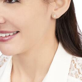 Boucles D'oreilles Puces Franzine Coquillage Or Jaune - Clous d'oreilles Femme | Histoire d'Or
