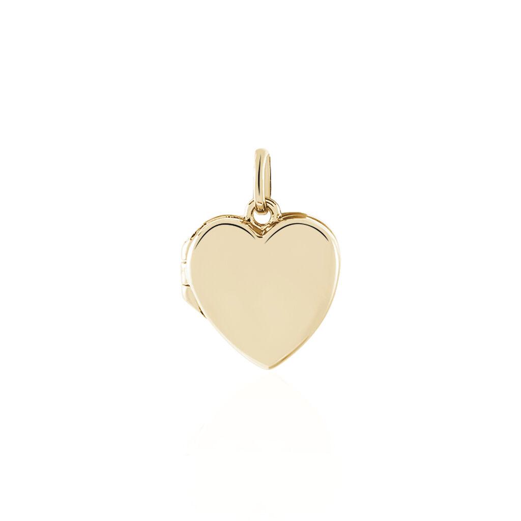 Pendentif Cory Plaque Or Jaune - Pendentifs Coeur Femme   Histoire d'Or