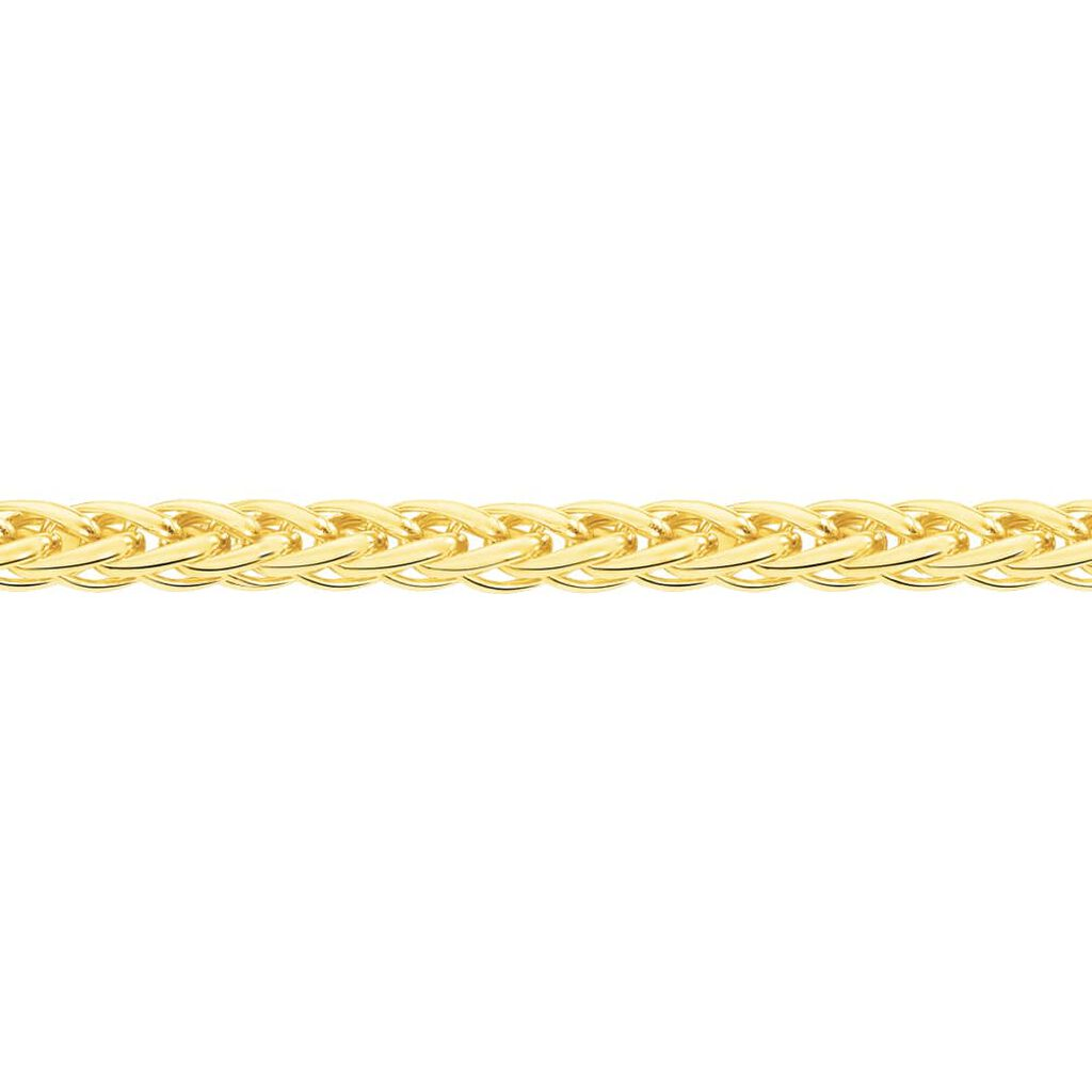 Collier Jayna Or Jaune Maille Palmier - Chaines Femme | Histoire d'Or