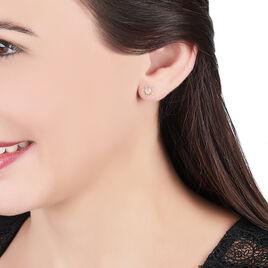 Boucles D'oreilles Puces Almahae Tortue Or Jaune - Clous d'oreilles Unisexe | Histoire d'Or