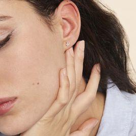 Boucles D'oreilles Puces Elais Etoile Or Jaune Oxyde De Zirconium - Boucles d'Oreilles Etoile Femme   Histoire d'Or