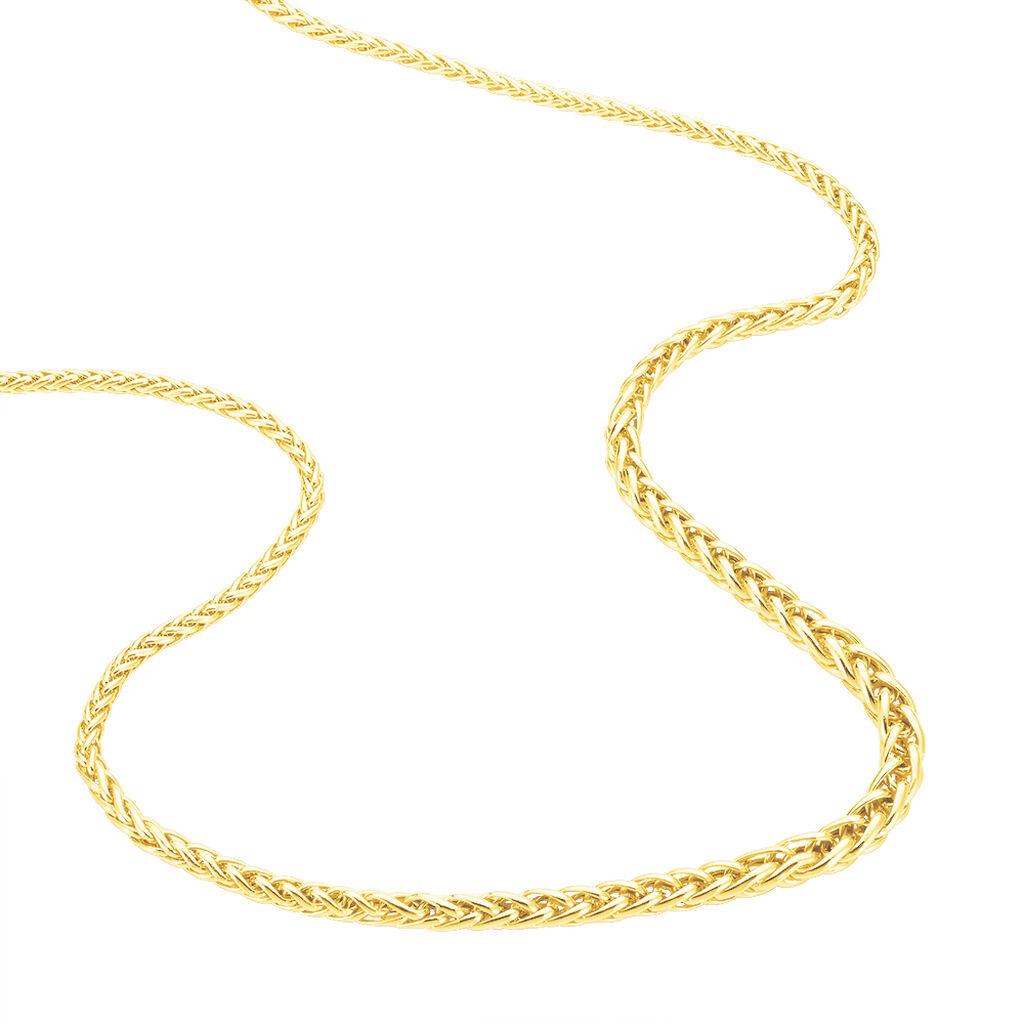 Chaîne Jayna Danilo Maille Palmier Or Jaune - Chaines Femme   Histoire d'Or