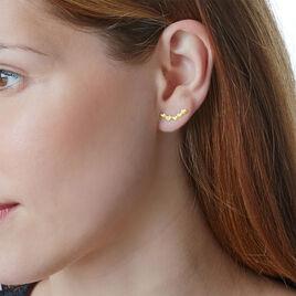 Bijoux D'oreilles Lavanya Or Jaune Oxyde De Zirconium - Boucles d'Oreilles Coeur Femme   Histoire d'Or