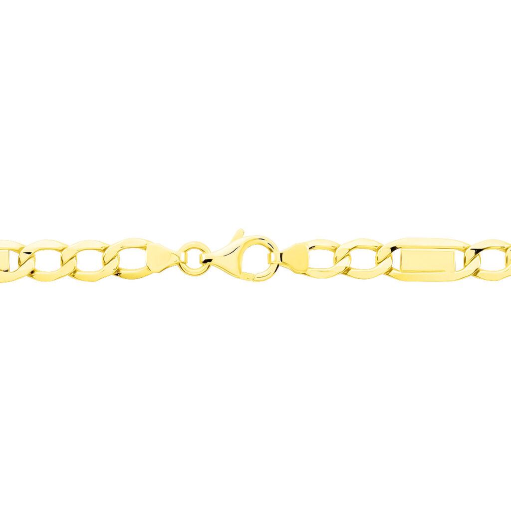 Chaîne Amaury Maille Alternée 1/3 Or Jaune - Chaines Femme | Histoire d'Or