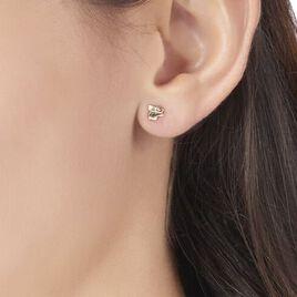 Boucles D'oreilles Puces Lapin Or Or Jaune - Clous d'oreilles Enfant | Histoire d'Or