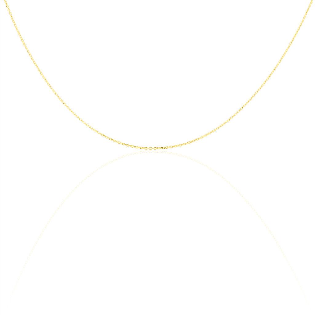 Chaîne Igoa Maille Forçat Diamantee Or Jaune - Chaines Unisexe   Histoire d'Or