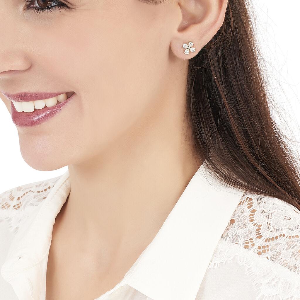 Boucles D'oreilles Puces Norah Or Jaune Perle De Culture Et Oxyde - Clous d'oreilles Femme   Histoire d'Or