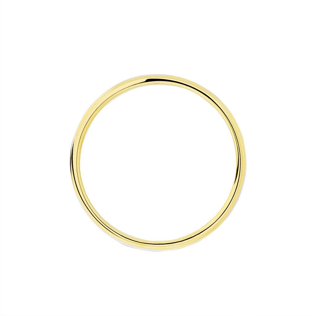 Alliance Miroir Ruban Plat Or Bicolore - Alliances Unisexe | Histoire d'Or