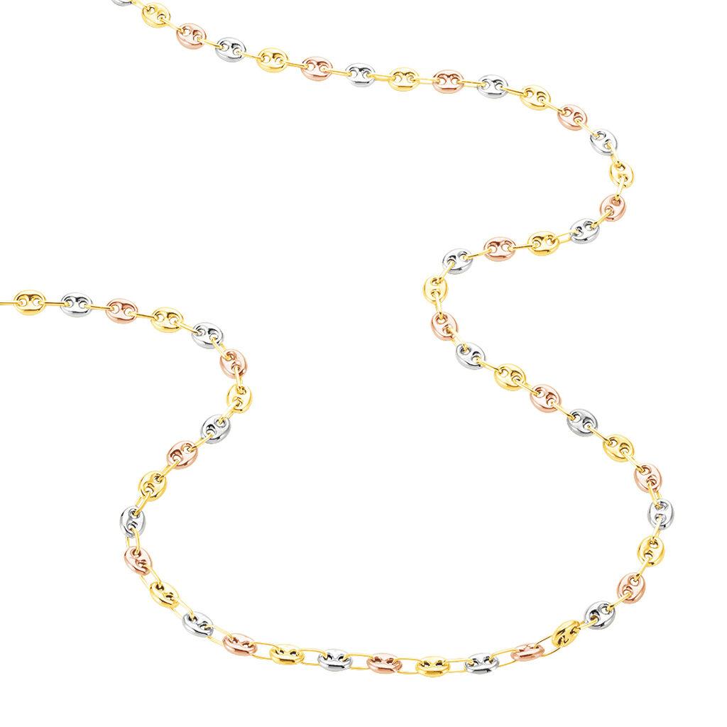 Collier Lou-ange Maille Grain De Café Or Tricolore - Chaines Femme | Histoire d'Or