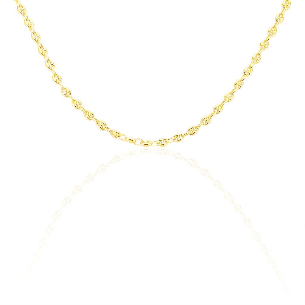 Collier Dami Maille Grain De Cafe Or Jaune - Chaines Femme   Histoire d'Or