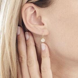 Créoles Lulu Rondes Or Jaune Oxyde De Zirconium - Boucles d'oreilles créoles Femme | Histoire d'Or