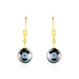 Boucles D'oreilles Puces Baroque Dormeuse Or Jaune Perle De Tahiti - Boucles d'oreilles pendantes Femme   Histoire d'Or