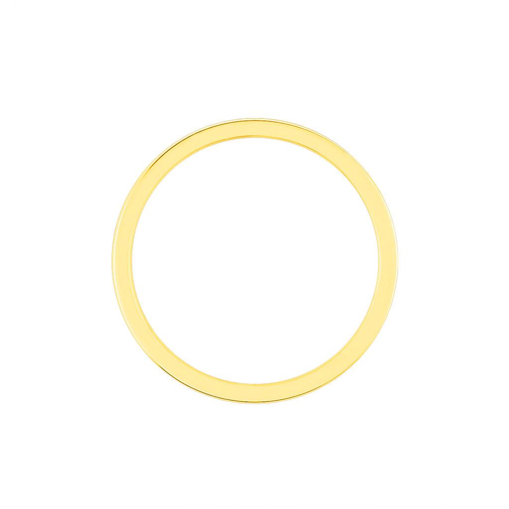 Alliance Heldea Ruban Plat Or Bicolore - Alliances Unisexe | Histoire d'Or