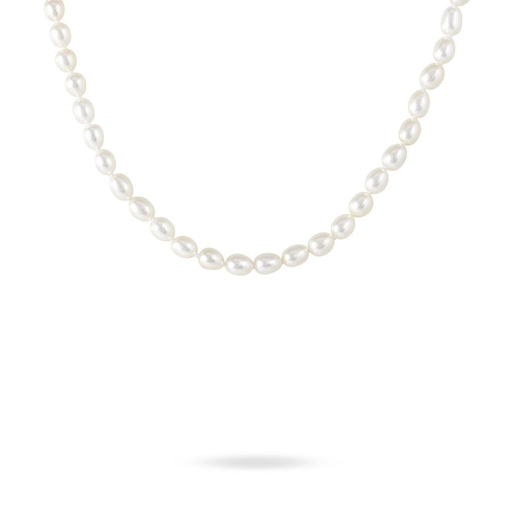 Collier Tamaniae Or Jaune Perle De Culture - Bijoux Femme | Histoire d'Or