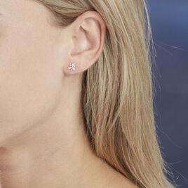 Boucles D'oreilles Puces Arsena Or Blanc Diamant - Clous d'oreilles Femme | Histoire d'Or