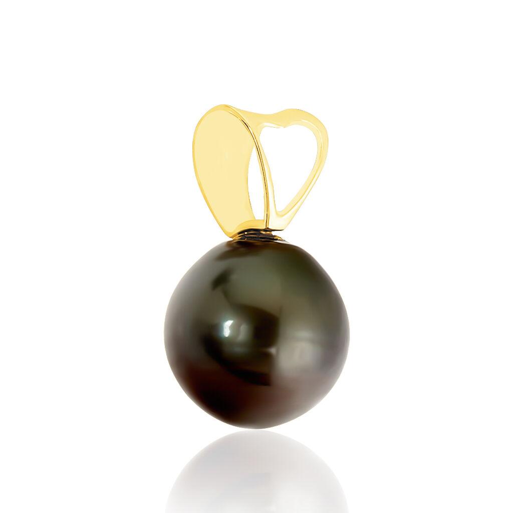 Pendentif Louizon Or Jaune Perle De Culture De Tahiti - Pendentifs Femme | Histoire d'Or