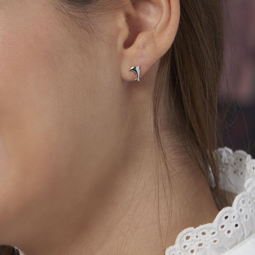 Boucles D'oreilles Puces Dauphinos Argent Blanc - Boucles d'oreilles fantaisie Femme   Histoire d'Or
