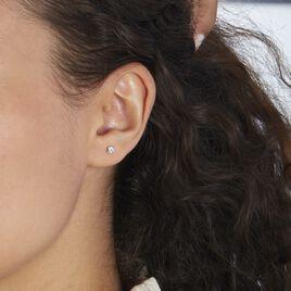 Boucles D'oreilles Puces Or Blanc Oxyde De Zirconium - Clous d'oreilles Femme   Histoire d'Or