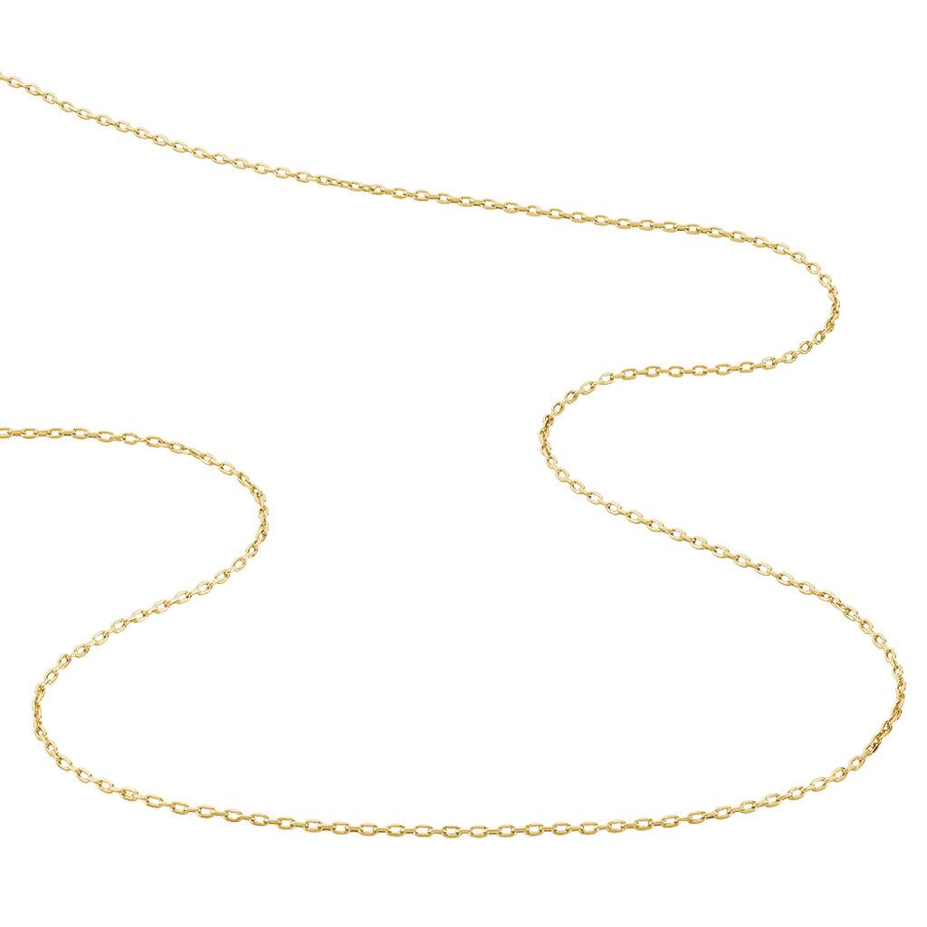 Chaîne Carmela Maille Forcat Plaque Or Jaune - Chaines Femme | Histoire d'Or