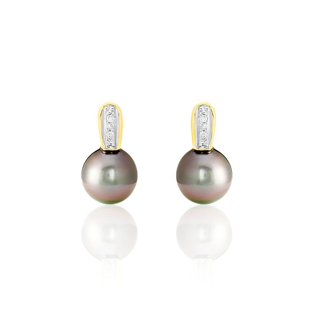 Boucles D'oreilles Puces Or Jaune Perle Culture De Tahiti Et Diamant - Clous d'oreilles Femme   Histoire d'Or