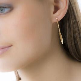Boucles D'oreilles Pendantes Bartolomea Feuille Or Jaune - Boucles d'Oreilles Plume Femme   Histoire d'Or