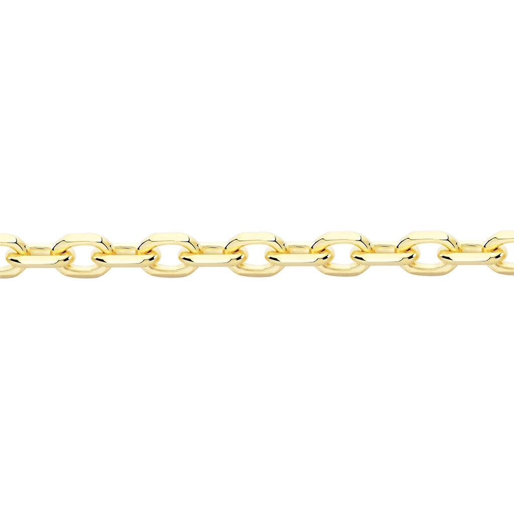 Chaîne Igoa Maille Forçat Diamantee Or Jaune - Chaines Unisexe | Histoire d'Or