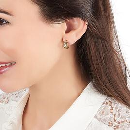 Créoles Asma Diamante Zebre Or Jaune - Boucles d'oreilles créoles Femme | Histoire d'Or