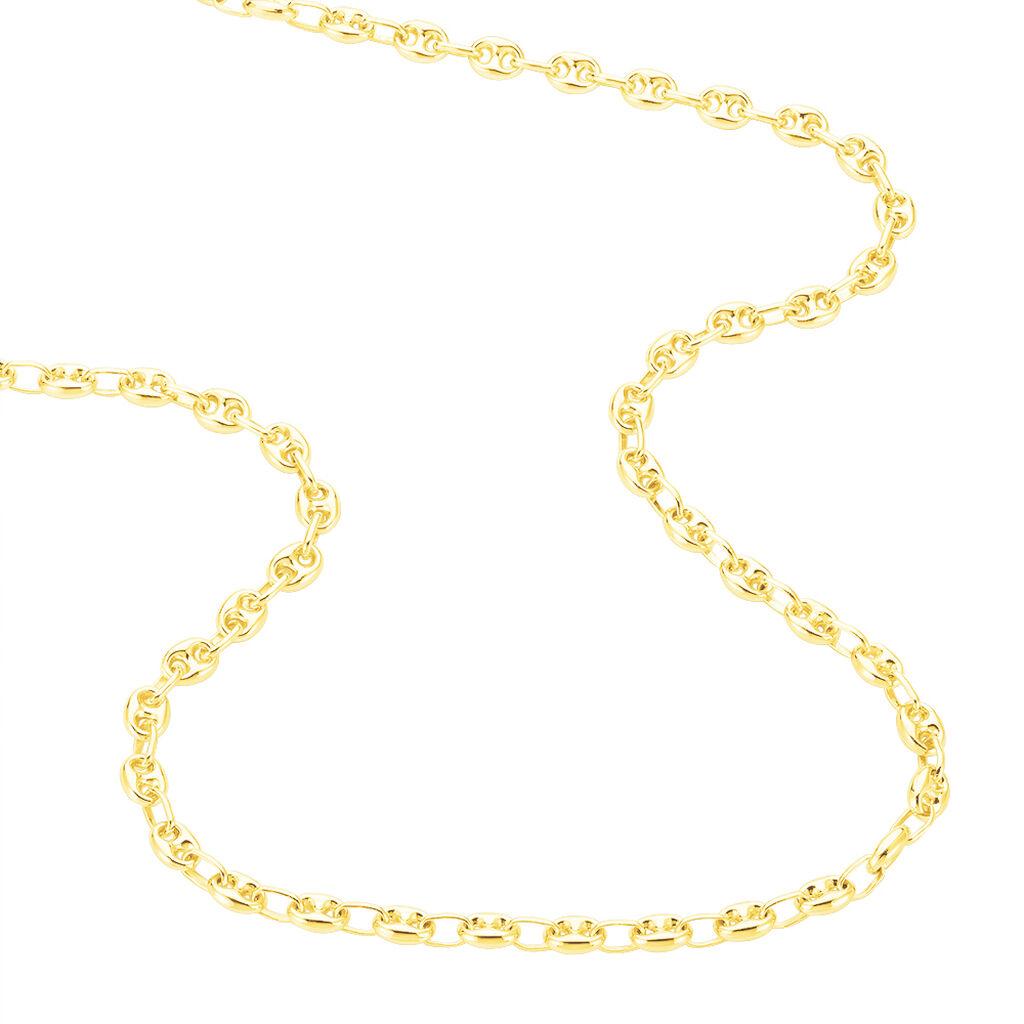 Collier Dami Maille Grain De Cafe Or Jaune - Chaines Femme | Histoire d'Or
