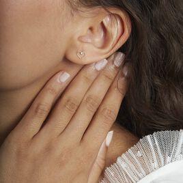 Boucles D'oreilles Puces Or Jaune Diervilla Oxydes - Boucles d'Oreilles Coeur Femme | Histoire d'Or