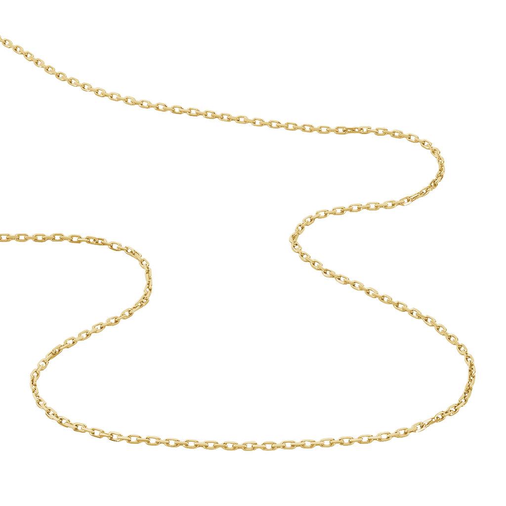 Chaîne Forcat Pl Plaque Or Jaune - Chaines Homme | Histoire d'Or
