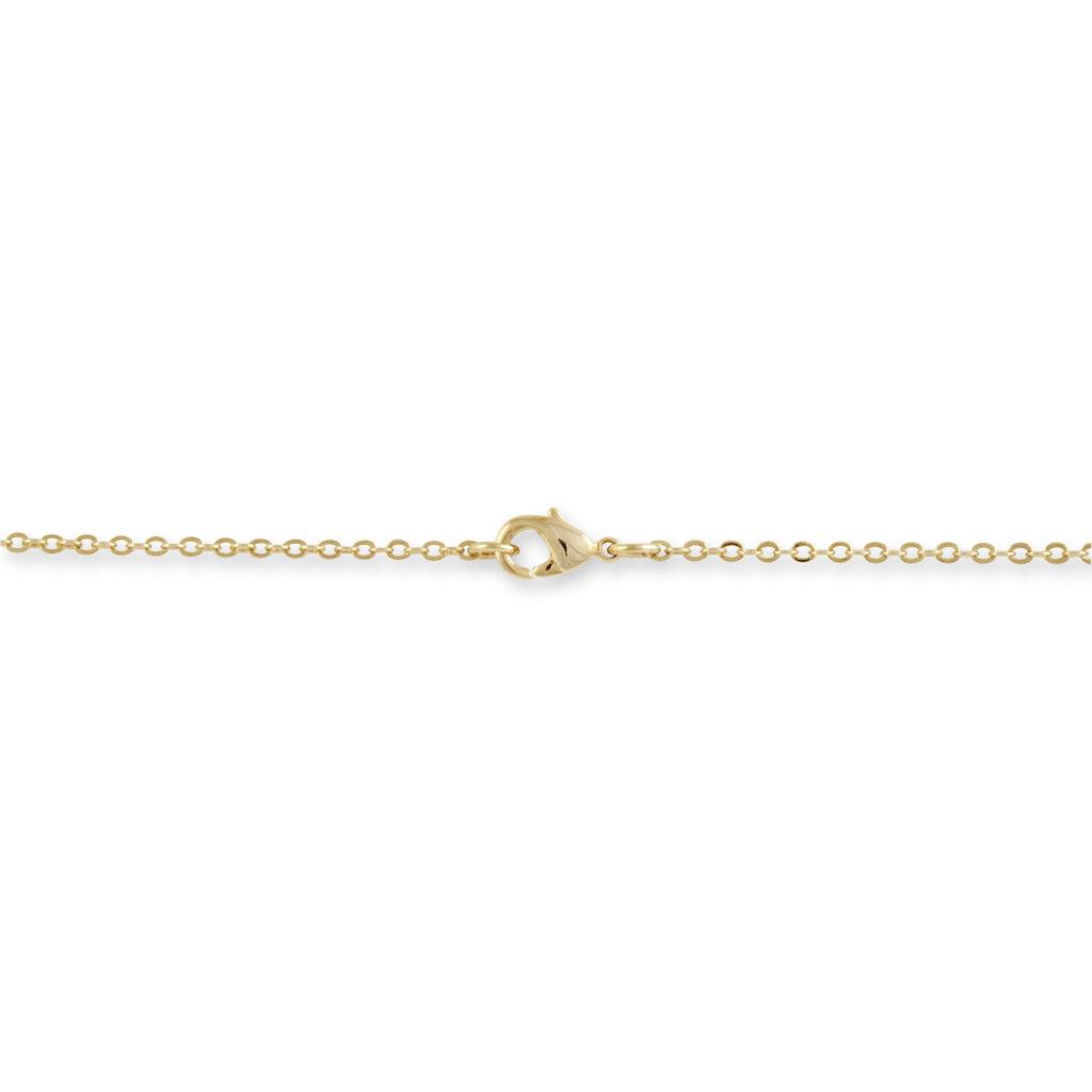 Collier Bertrane Plaque Or Jaune Oxyde De Zirconium - Bijoux Femme   Histoire d'Or