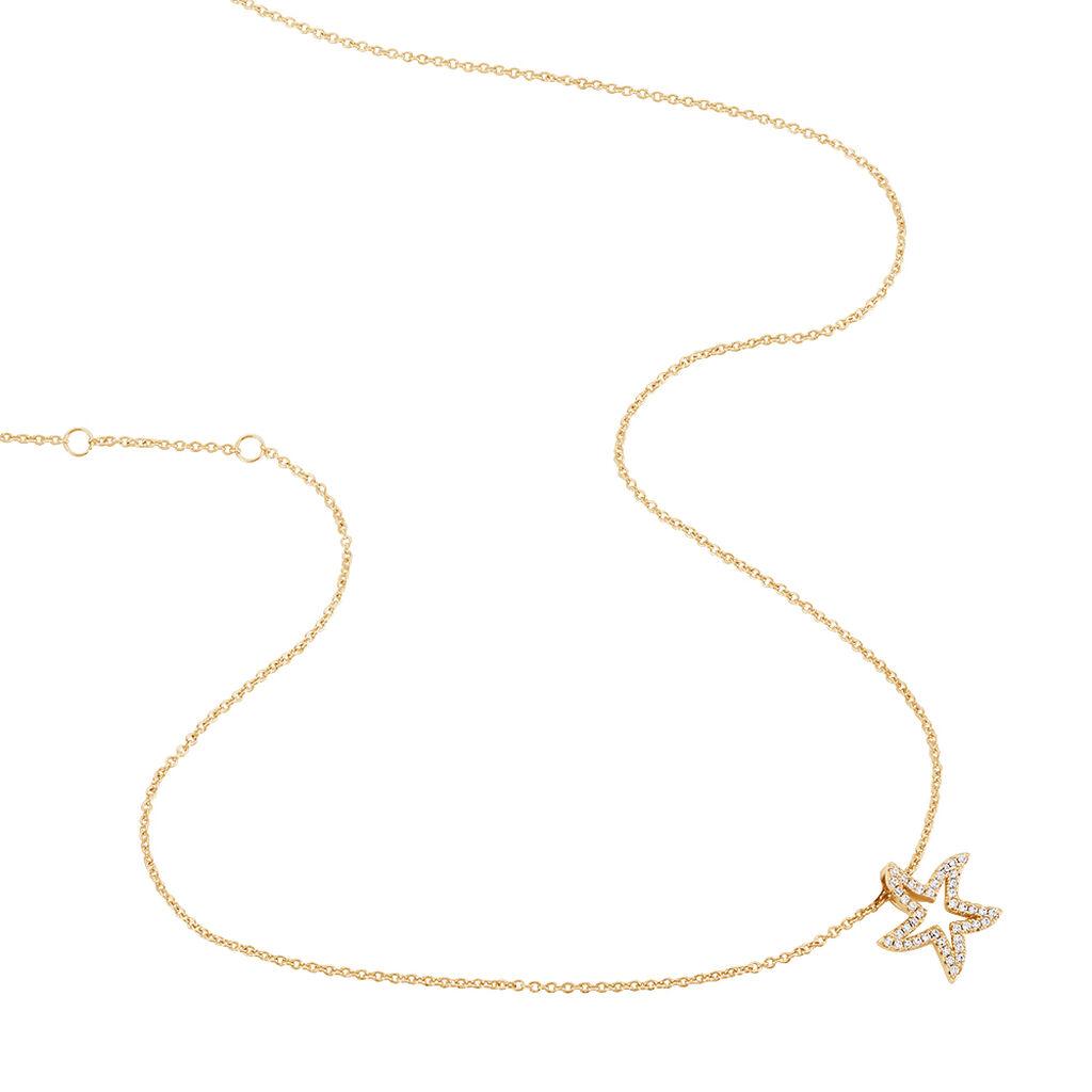 Collier Plaque Or Jaune Oxyde De Zirconium - Colliers Etoile Femme | Histoire d'Or