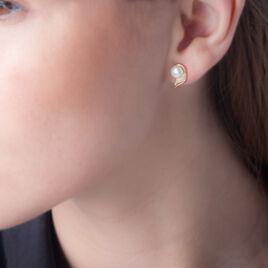 Boucles D'oreilles Puces Antoinette Or Jaune Perle De Culture - Clous d'oreilles Femme   Histoire d'Or