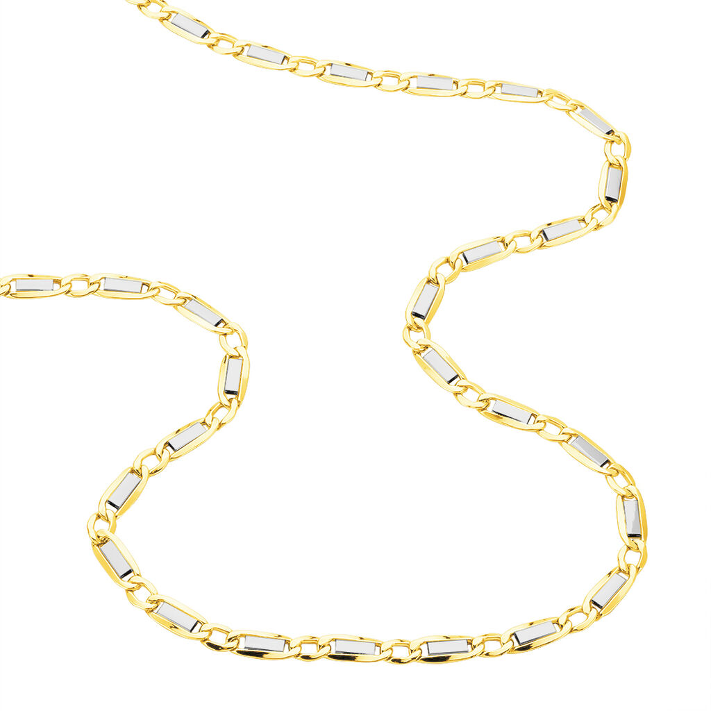 Collier Danae Maille Plaquette Alternee 1/1 Or Bicolore - Chaines Homme | Histoire d'Or