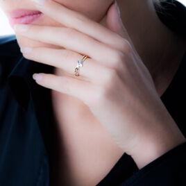 Bague Brixia Or Bicolore Diamant - Bagues avec pierre Femme   Histoire d'Or