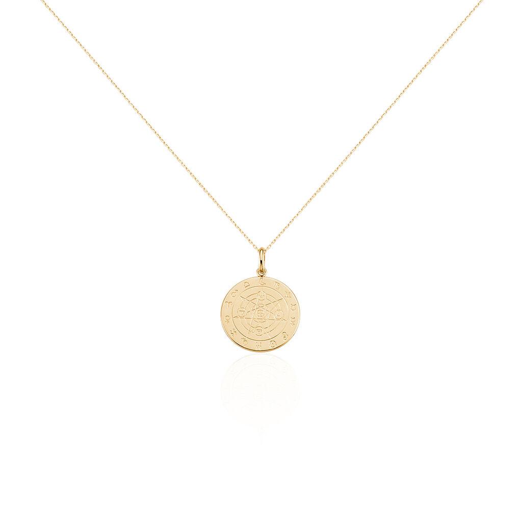 Collier Lippo Plaque Or Jaune - Bijoux Femme | Histoire d'Or
