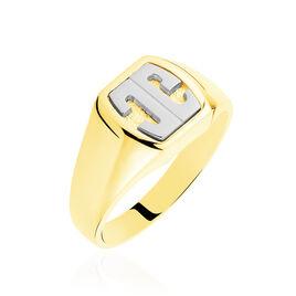 Chevaliere Or Jaune Tonneau - Chevalières Unisexe | Histoire d'Or