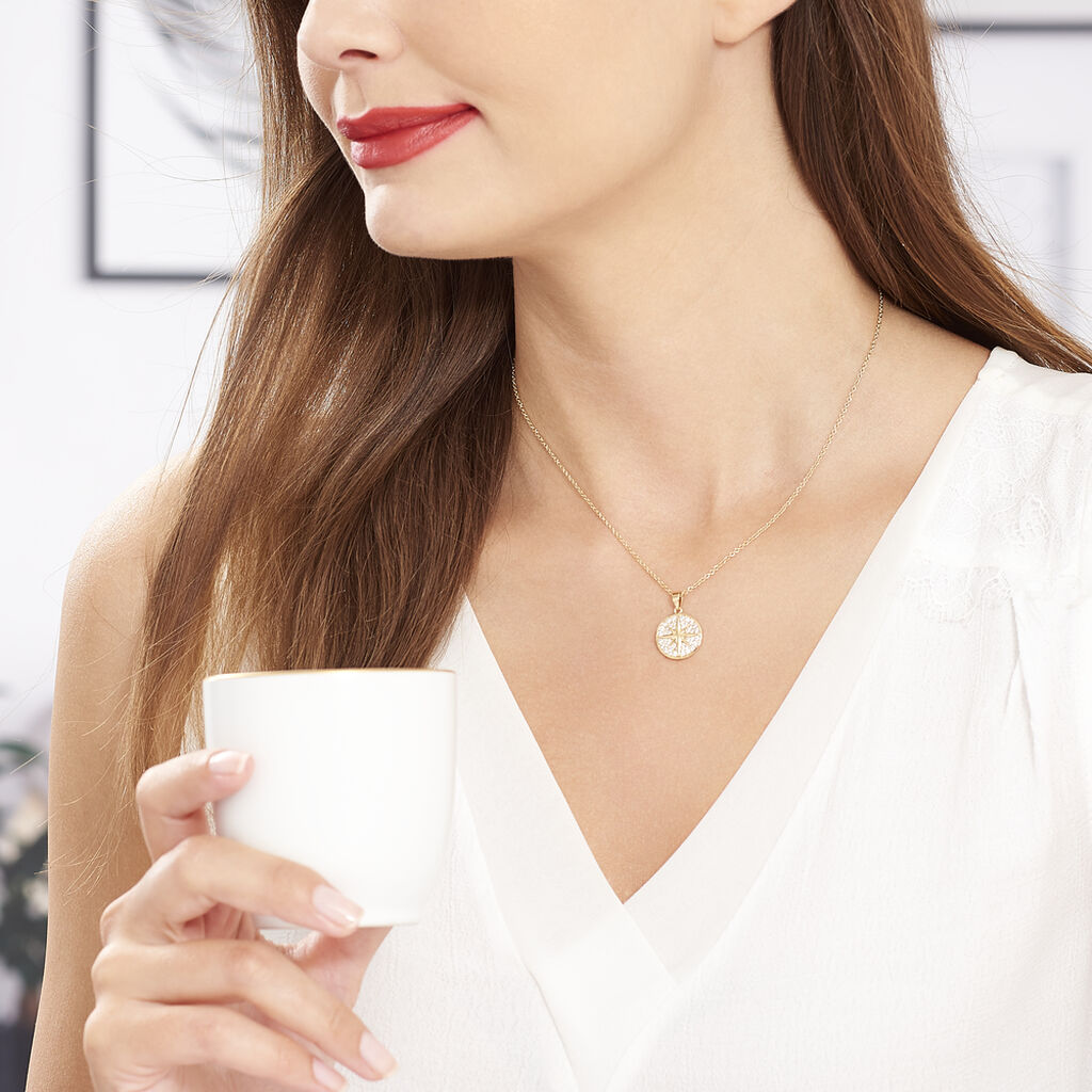Collier Maria-carmen Plaque Or Jaune Oxyde De Zirconium - Colliers Etoile Femme   Histoire d'Or