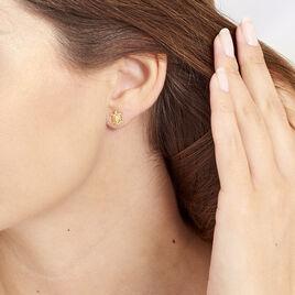 Boucles D'oreilles Puces Almahae Tortue Or Jaune - Clous d'oreilles Femme | Histoire d'Or
