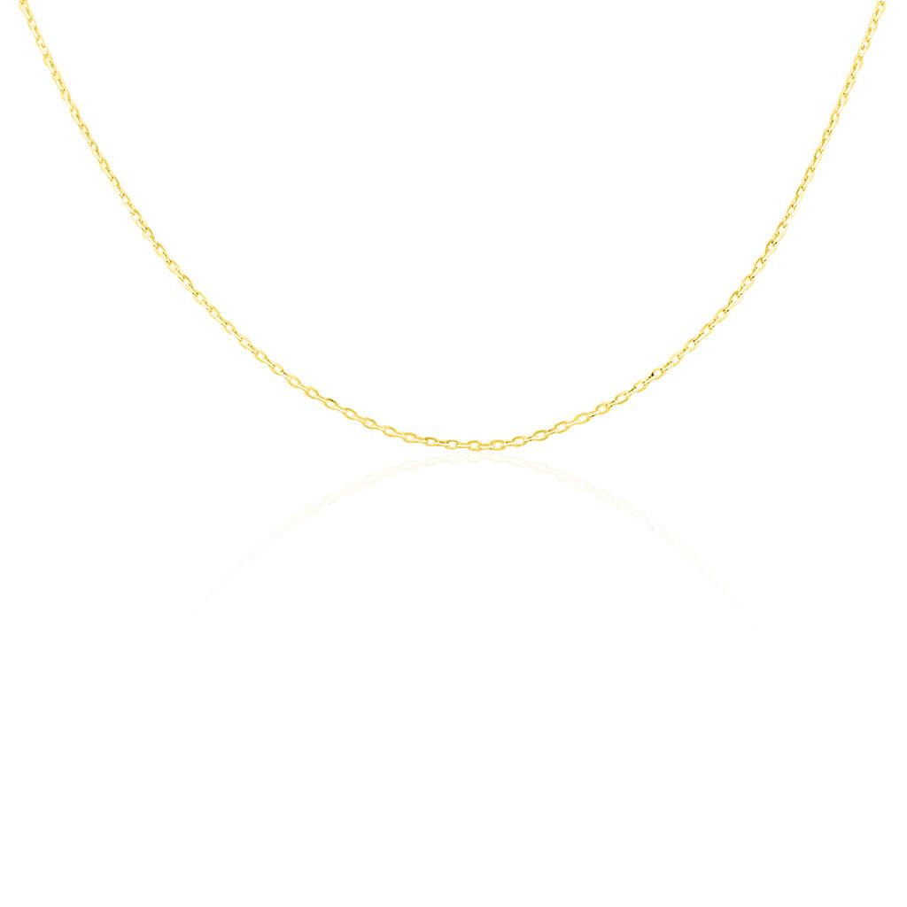 Chaîne Igoa Maille Forcat Diamantee Or Jaune - Chaines Unisexe | Histoire d'Or
