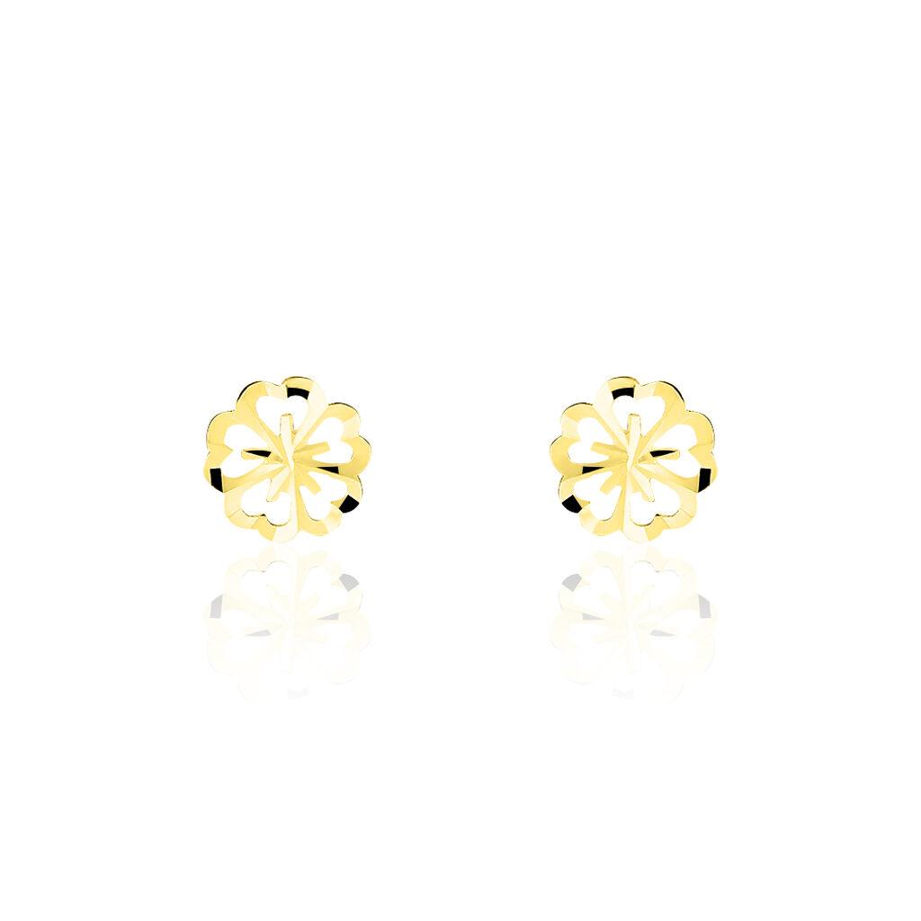 Boucles D'oreilles Puces Philine Fleur Or Jaune - Boucles d'Oreilles Trèfle Femme | Histoire d'Or