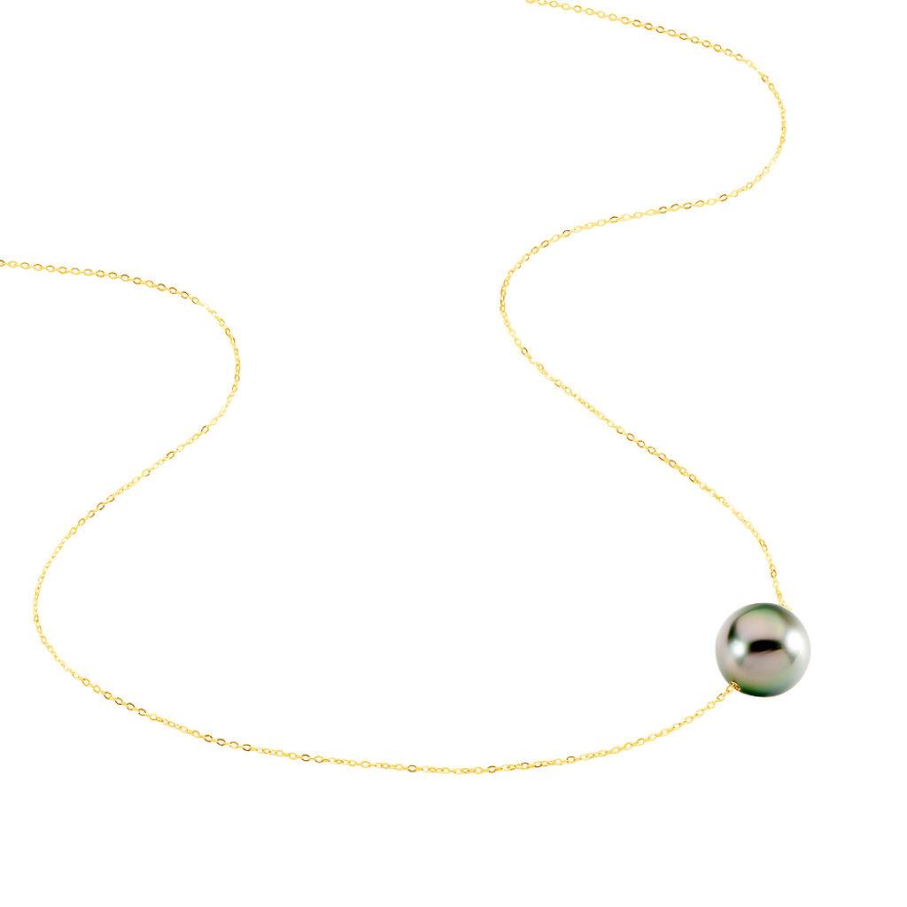 Collier Sissy Or Jaune Perle De Culture De Tahiti - Bijoux Femme | Histoire d'Or