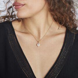 Collier Lisea Plaque Or Oxydes De Zirconium - Colliers fantaisie Femme   Histoire d'Or