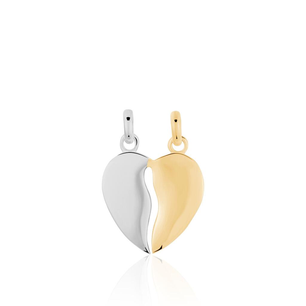 Pendentif Marie-stephanie Plaque Or Bicolore - Pendentifs Coeur Femme | Histoire d'Or