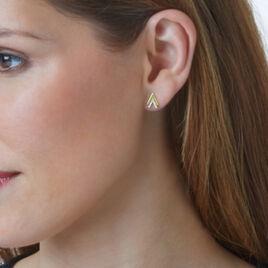 Boucles D'oreilles Puces Dao Or Jaune Oxyde De Zirconium - Boucles d'Oreilles Plume Femme   Histoire d'Or