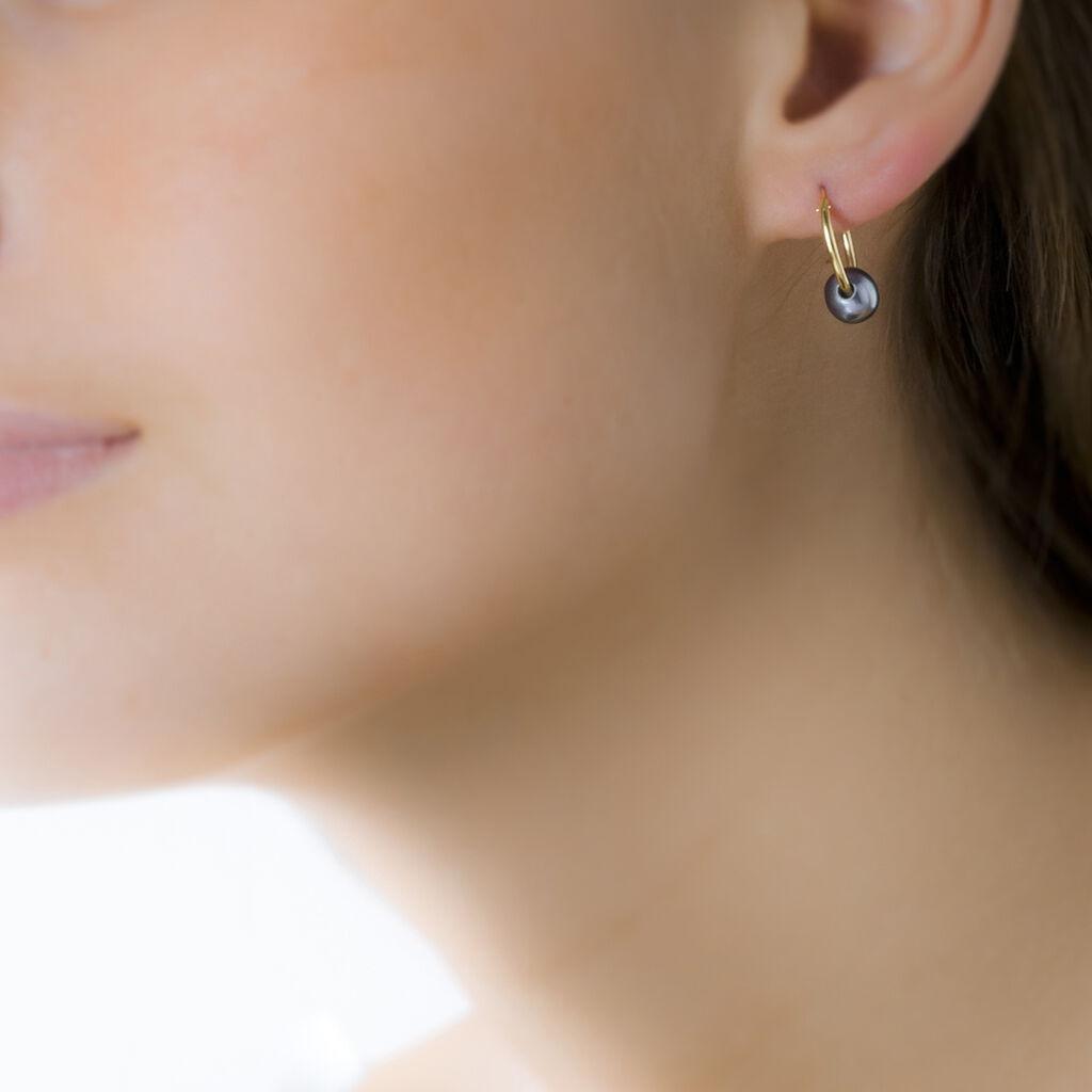 Boucles D'oreilles Puces Suraya Or Jaune Perle De Culture - Boucles d'oreilles créoles Femme   Histoire d'Or