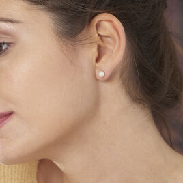 Boucles D'oreilles Puces Or Jaune Perle - Clous d'oreilles Femme | Histoire d'Or